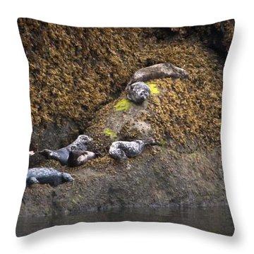 Harbor Seals Throw Pillow