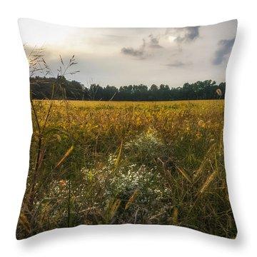 Throw Pillow featuring the photograph Hard Sun by Glenn DiPaola