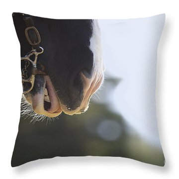 Hard Work Plowing Throw Pillow