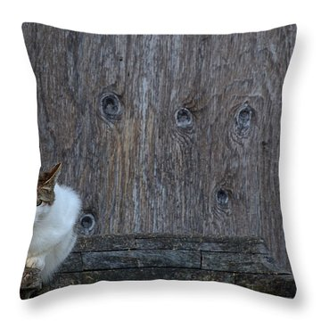 Throw Pillow featuring the photograph Harlequin Rustic by Chriss Pagani