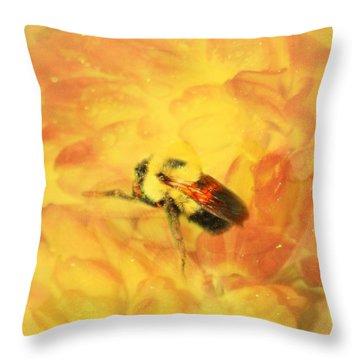 Harmless Enough Throw Pillow by Barbara S Nickerson