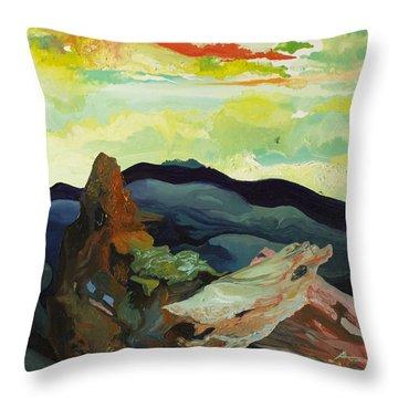 Harmonica Under Firewood Throw Pillow by Joseph Demaree