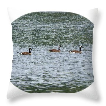 Harmonious Canada Geese Throw Pillow by Will Borden