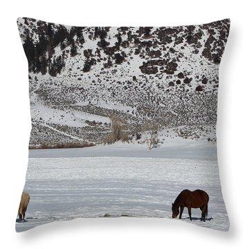 Harmony Throw Pillow by Fiona Kennard