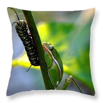 Harmony Throw Pillow by Jodi Terracina