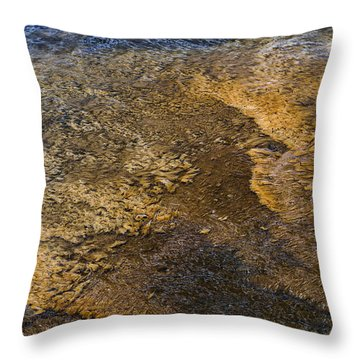 Throw Pillow featuring the photograph Harmony by Nadalyn Larsen