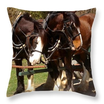 Harness Partners Throw Pillow