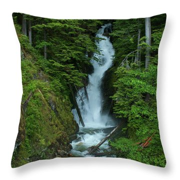 Throw Pillow featuring the photograph Harrison Lake Road Falls by Rod Wiens