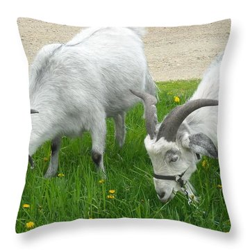 Harry And David In Dandelions  Throw Pillow