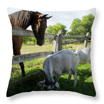 Harry And David With A Horse Friend Throw Pillow