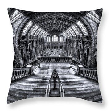 Ceiling Throw Pillows