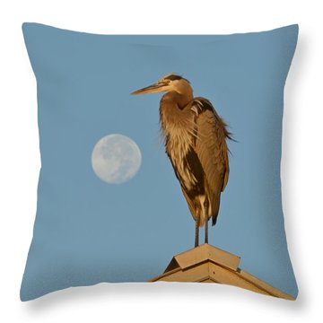 Harry The Heron Ponders A Trip To The Full Moon Throw Pillow by Jeff at JSJ Photography