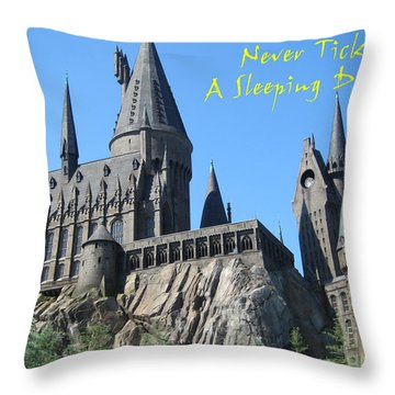 Harry's Hogwarts Throw Pillow