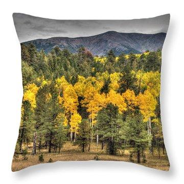 Hart Prairie Throw Pillow