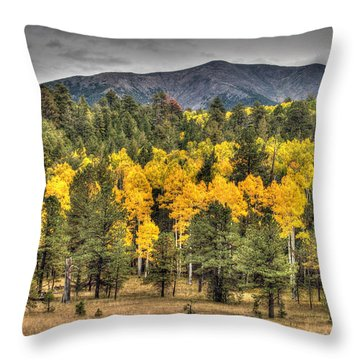 Hart Prairie Throw Pillow