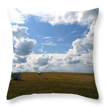 Harvest Blue  Throw Pillow by Neal Eslinger