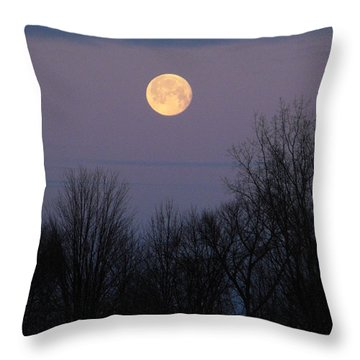 Harvest Moon Throw Pillow by Erick Schmidt
