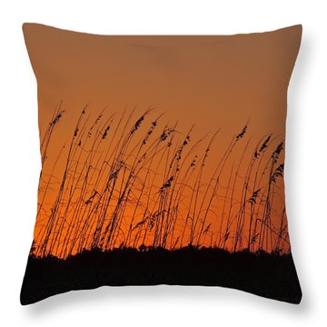 Harvest Sky And Sea Oats Throw Pillow