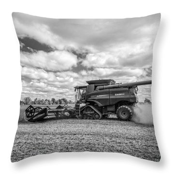 Harvest Time Throw Pillow by Dale Kincaid