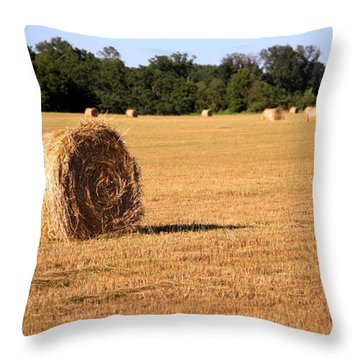 Throw Pillow featuring the photograph Harvest Time by Gordon Elwell