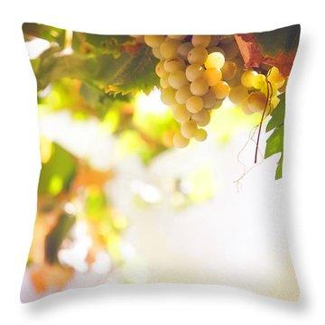 Harvest Time. Sunny Grapes I Throw Pillow by Jenny Rainbow