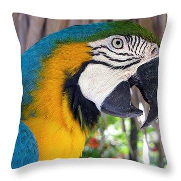 Harvey The Parrot 2 Throw Pillow