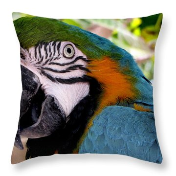 Harvey Throw Pillow