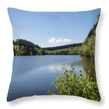 Hasselvorsperre Throw Pillow by Andreas Levi