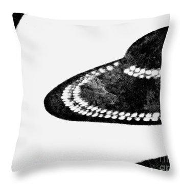Throw Pillow featuring the photograph Hat Check by Lin Haring