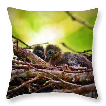 Throw Pillow featuring the photograph Hoatzin Hatchlings In The Amazon by Henry Kowalski
