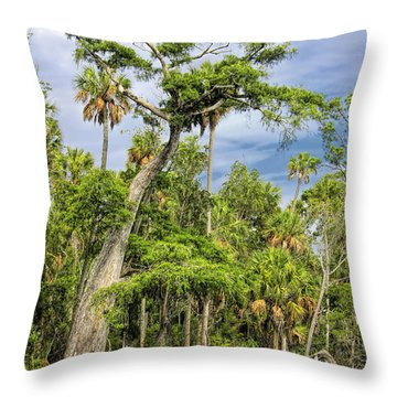 Hatrack Cypress Throw Pillow