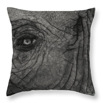 Haunting Eye Throw Pillow