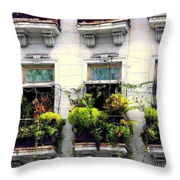 Havana Windows Throw Pillow