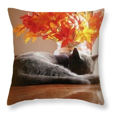 Have A Restful Thanksgiving Throw Pillow by Jennifer E Doll