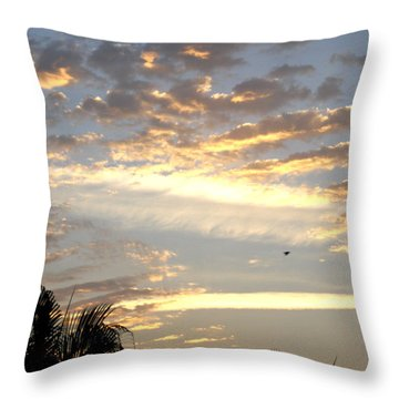 Have A Wonderful Day Throw Pillow