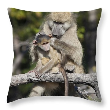 Throw Pillow featuring the photograph Have You Cleaned Behind Your Ears by Liz Leyden