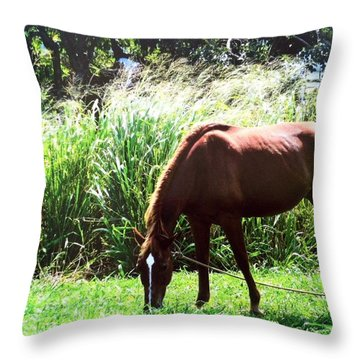 Having Lunch Throw Pillow by Alohi Fujimoto