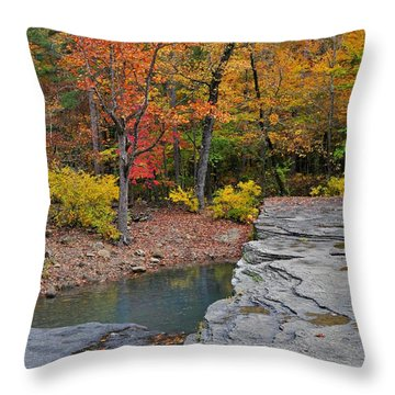 Haw Creek Fall 2 Throw Pillow by Marty Koch