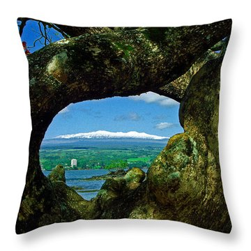 Hawaii Snow Throw Pillow
