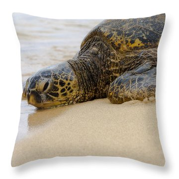 Hawaiian Green Sea Turtle 3 Throw Pillow by Brian Harig