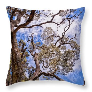 Throw Pillow featuring the photograph Hawaiian Sky by Jim Thompson