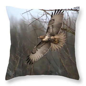 Hawk In Flight Throw Pillow by Angie Vogel