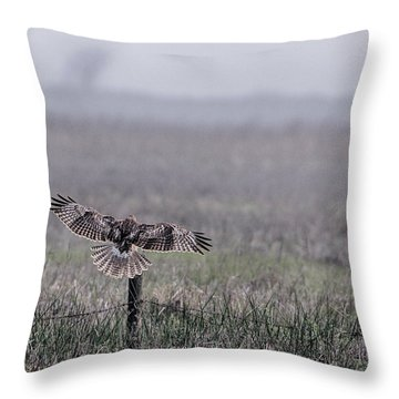 Hawk Landing Throw Pillow