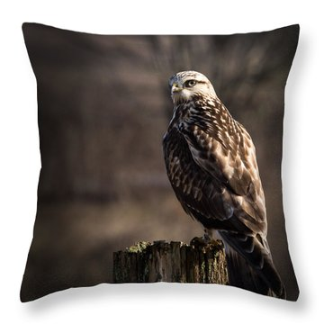 Hawk On A Post Throw Pillow