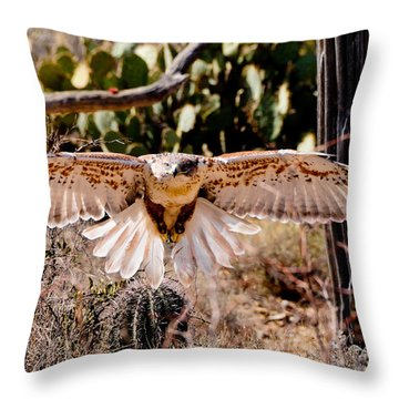 Hawk On The Hunt Throw Pillow by Bonnie Fink
