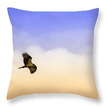 Hawk Over Head Throw Pillow