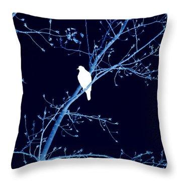 Hawk Silhouette On Blue Throw Pillow by Lesa Fine