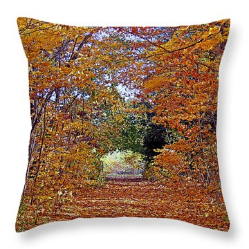 Hawthorn Hollow Throw Pillow