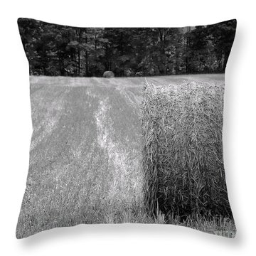 Hay Baby Throw Pillow