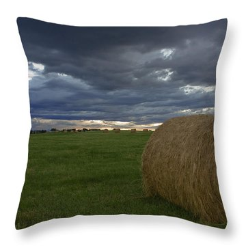 Hay Bail Throw Pillow